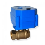 CWX-60P water automatic control valve
