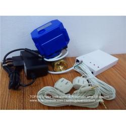 DN20 BSP Brass water leak alarm system